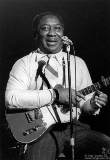 Muddy Waters, NYC - 1977